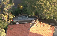 Lexus Driver Ends Up on Someone's Roof