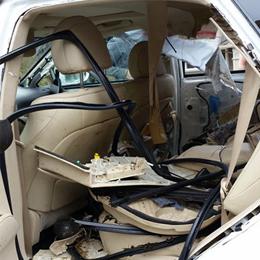 Bear Leaves $70k Lexus Barely Recognizable